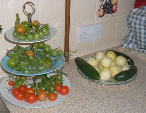 2012_0918cucumbers0005w.jpg