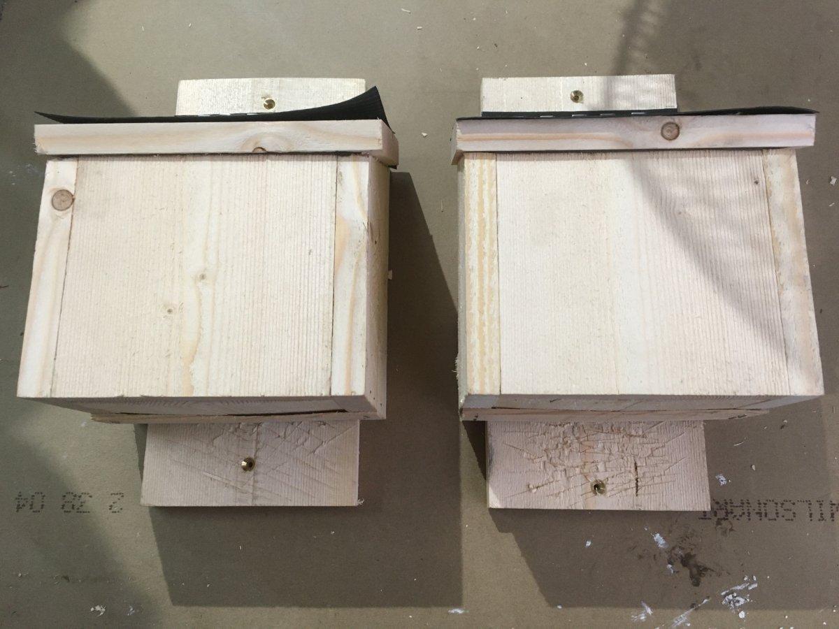 bat boxes 2.jpg