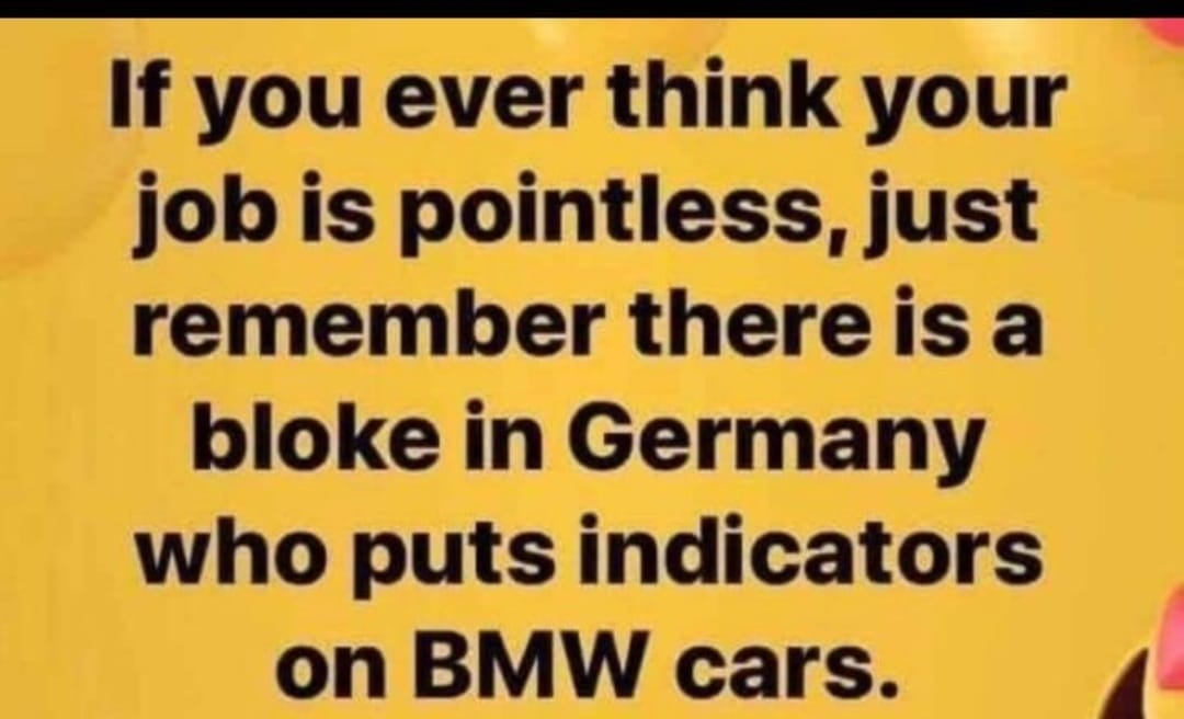 bmw indicator.jpg