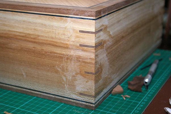 Elm box 18.jpg