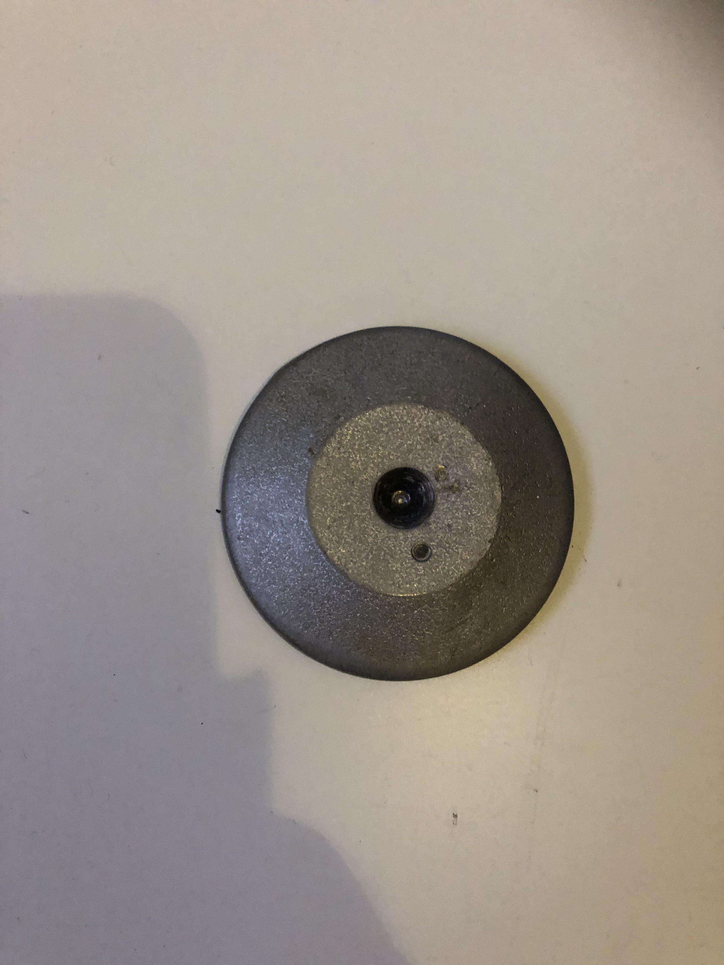 Eumenia rear disk.jpg