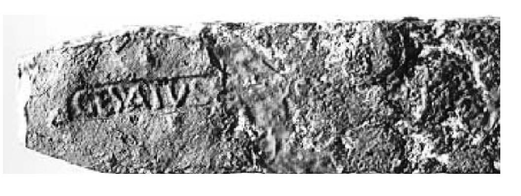 Iron Stamp_1.jpg