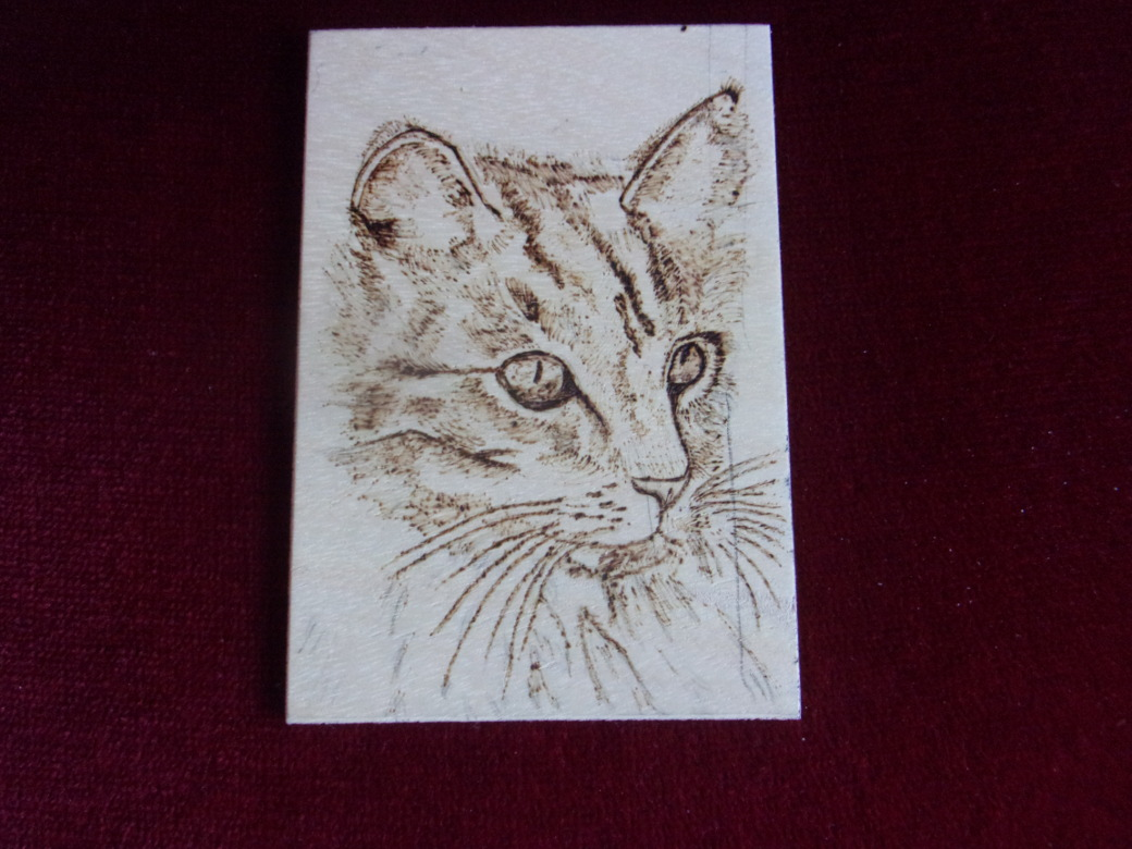 Reworked pyrography cat.JPG