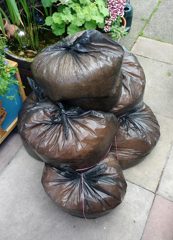 Seven Bags Sawdust.jpg