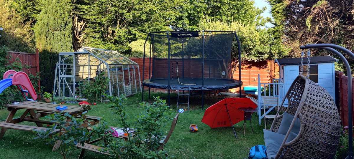 very early garden.jpeg