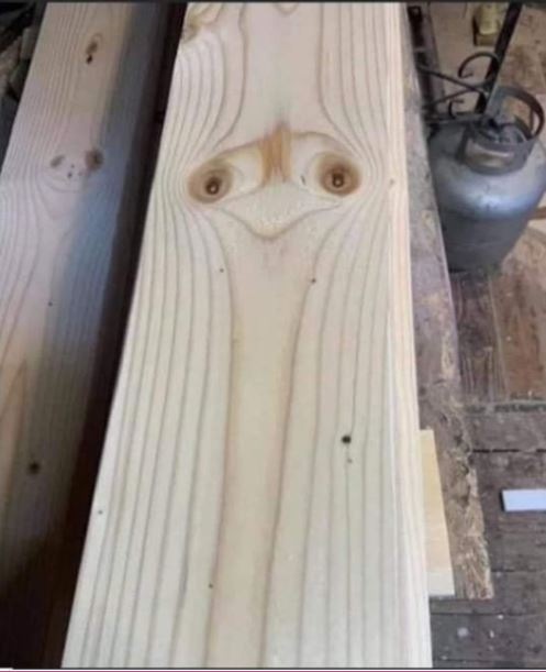 Wood picture.JPG
